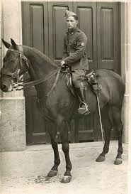 martini henry ww1 3333 best history images on pinterest true crime hatfields and