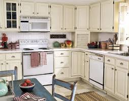 Special Paint For Kitchen Cabinets Can I Paint My Kitchen Cabinets Kenangorgun Com