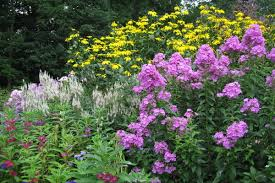 a cottage garden primer csmonitor com