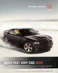 Doge Car Meme - doge charger much fast very car imgur