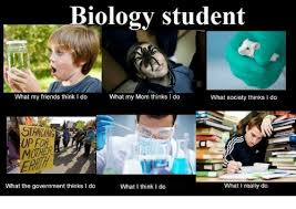 What I Really Do Meme - biology student what my friends think i do what my mom thinks ido