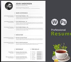 Best Simple Resume by 105 Best Job Resume Templates U0026 Tips Images On Pinterest Cv
