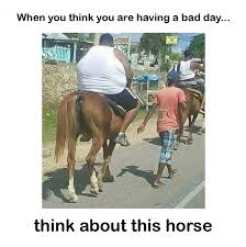 Having A Bad Day Meme - you think you are having a bad day meme