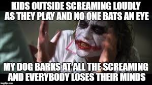 Dog Barking Meme - my neighbors came over today to complain about my dog barking