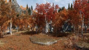 realistic aspen trees 4k at skyrim nexus mods and community