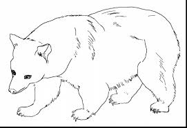 eric carle coloring pages astounding brown bear coloring page with brown bear coloring pages
