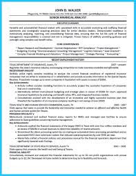 Senior Finance Executive Resume It Business Analyst Resume Resume Template Catchy For Business