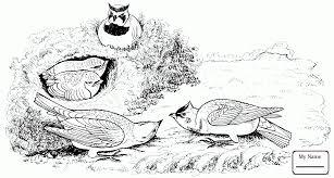 coloring pages for kids skylark lark birds coloring7 com