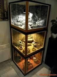 best 25 reptile enclosure ideas on pinterest lizard terrarium