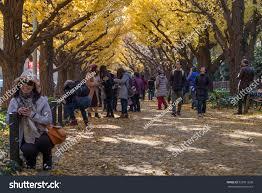 November Tokyo by Tokyo Japan November 26th 2016 Crowd Stock Photo 523911838