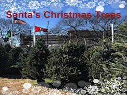 nashville traditions santa s trees lot since 1970 has been a