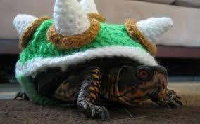 King Koopa Halloween Costume Crocheted Turtle Costumes King Koopa