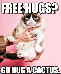 Cat Hug Meme - free hugs pink grumpy cat meme on memegen