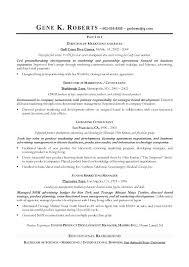 Director Of It Resume Sample Cio Resume It Director Sample Resume Executive Resume