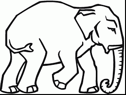 magnificent asian elephant coloring page with elephant coloring