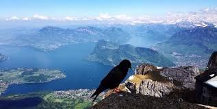 cremagliera pilatus monte pilatus svizzera ph luca lillo foto di mount pilatus