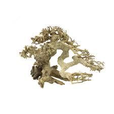 bonsai tree driftwood small premium a4080100 45 99