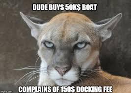 Puma Meme - annoyed puma meme generator imgflip