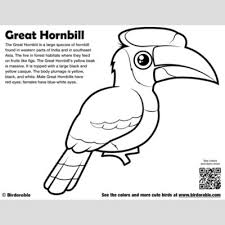 cute bird coloring pages birdorable free downloads