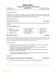 unique basic resume template free best templates free basic resume