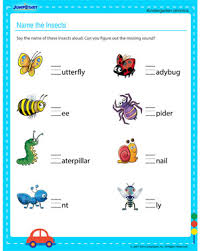 name the insects u2013 free english worksheet for kindergarten kids