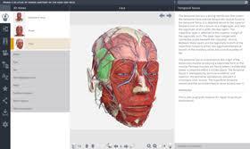 Atlas Help Anatomy Tv Video Tutorials 3d Human Anatomy Primal Pictures
