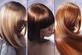 best hair salons in northern nj elite hair studio and salon in hasbrouck heights nj