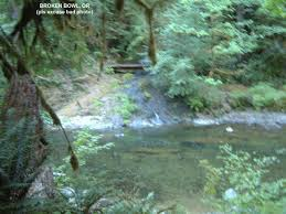 Google Maps Salem Oregon by Swimmingholes Info Oregon Swimming Holes And Springs Rivers