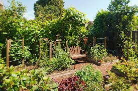 Fruit Garden Ideas Gorgeous 24 Fantastic Backyard Vegetable Garden Ideas As Well As