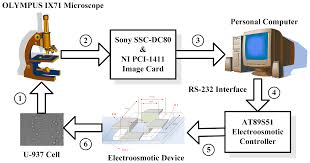 sensors free full text design of a single cell positioning