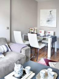 1000 ideas about living magnificent small living and dining room