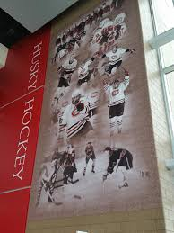 national hockey center herb brooks arena pawlenty has already been given the nickname in minnesota hockey circles as the