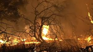 Wildfire John Denver by At Least 31 Dead In Horrific California Wildfires Hundreds Missing