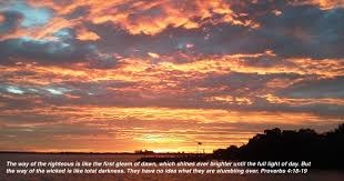 Light Of Dawn Disoriented Losing The Hope Of Dawn Make The Vision Plain