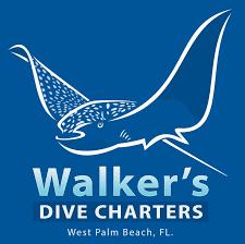 walker u0027s dive charters south florida finds