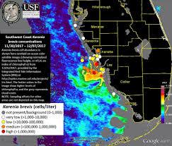 Florida Shark Attack Map Florida Shark Attack Map 12 Pakistan On Map Natick Mall Map