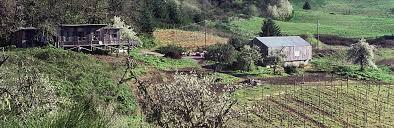 history elk cove vineyards