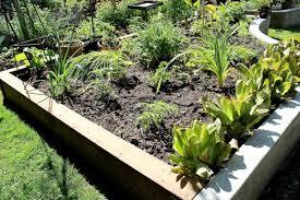 how to plant raised vegetable garden ideas u2014 luxury homes