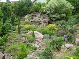 Pflanzen Fur Japanischen Garten Der Steingarten U2013 Steine Und Pflanzen Als Blickfang Im Garten