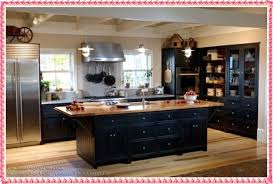 Kitchen Cabinets Samples Best Kitchen Furniture 2016 Black Kitchen Cabinets Samples New