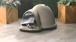 Doghouse For Large Dogs Petmate Indigo Dog House Pad Product Review Video Youtube