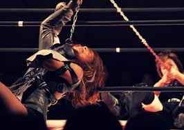 wwe extreme rules most violent and brutal women u0027s matches in