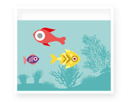 ornamental fish the trade the benefits the facts