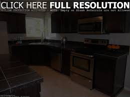 Black Kitchen Cabinets With Stainless Steel Appliances Matte Black Stainless Steel Appliances Appliances Ideas