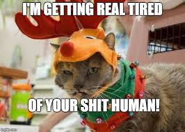 Getting Real Tired Of Your Bullshit Meme Generator - tired of your shit human imgflip