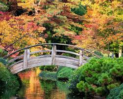 Botanical Gardens Ft Worth Fort Worth Botanic Garden Half Price Tickets To Japanese Gardens