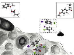 catalysts free full text mesoporous zsm 5 zeolites in acid