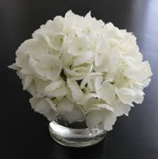 White Hydrangea Centerpiece by Excentricities Faux White Hydrangea Arrangement