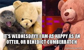 Cumberbatch Otter Meme - it s wednesday i am as happy as an otter or benedict