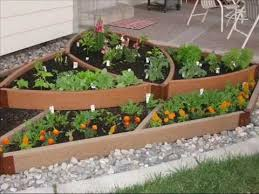 cool and opulent small vegetable garden ideas veggie sunset